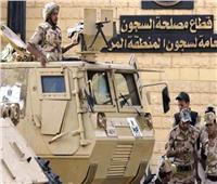 عليوة: جميع السجون المصرية تخضع لمعايير حقوق الإنسان