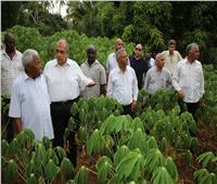 تفاصيل| «الزراعة» ترصد انجازات مشروع المزارع المصرية الإفريقية المشتركة