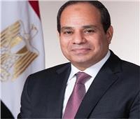 السيسي يعود إلى القاهرة بعد المشاركة بقمة الاتحاد الأفريقي في النيجر