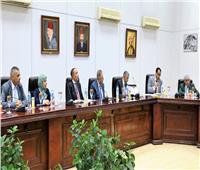 تفاصيل اجتماع القومية لـ«الآثار المستردة» لبحث ملف بيع رأس توت عنخ أمون