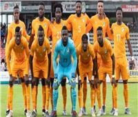 أمم إفريقيا 2019| حارس «الأفيال»: «فعلنا المستحيل» ولكنها كرة القدم
