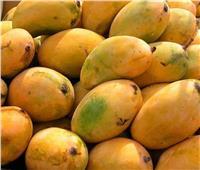 أسعار وأنواع «المانجو» بسوق العبور..اليوم