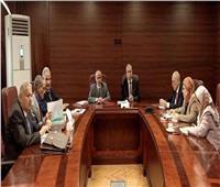 المجلس الأعلى للنيابة الإداريةيعقد أول اجتماع بالتشكيل الجديد