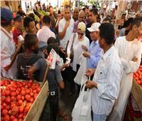 صور| وزيرة البيئة توزع أكياس صحية على المواطنين في سوق الدهار بالغردقة