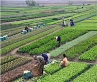 «الزراعة» تبحث آفاق التعاون الزراعي مع جنوب السودان