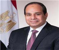 السيسي يُصدر قرارًا بإنشاء جامعة«هليوبوليس»