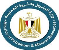 وزارة البترول تنظم ورشة عمل لتحويل مصر إلى مركز إقليمي للطاقة