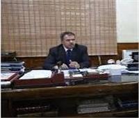 «جنوب القاهرة» لتوزيع الكهرباء تستعرض إنجازاتها