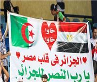 أمم إفريقيا 2019| جزائريون يقدمون أغنية للمصريين تدعو للتآخي