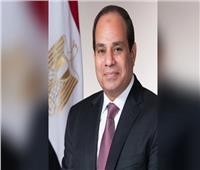 شاهد| تفاصيل اجتماعي الرئيس السيسي مع «توفيق والفار»