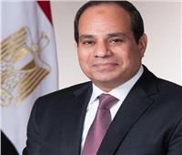 الرئيس يناقش مع وزير الطاقة الأمريكي تعزيز الاستثمارات في مصر