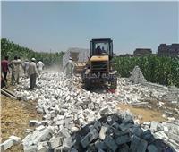 إزالة 26 حالةتعدٍعلي الأراضي الزراعية بالسادات