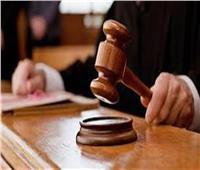 النطق بالحكم في قرار التحفظ على أموال متهمي «خلية تحالف الأمل» 4 أغسطس