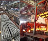 غداً «الإدارية العليا» تنظر طعون «الصناعة» على إلغاء فرض رسوم على واردات البيلت