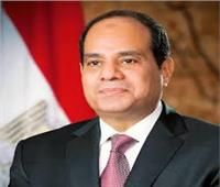 الرئيس يعقد جلسة مباحثات مع سلطان بروناى بـقصر الاتحادية
