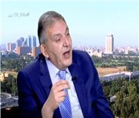فيديو| الوكيل: المؤسسات الدولية تؤكد نجاح الإصلاح الاقتصادي بمصر