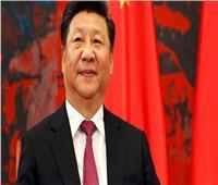 رئيس الصين يؤكد دعم بلاده القوي لجهود مصر في حماية أمنها ومكافحة الإرهاب