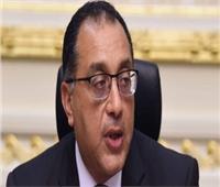 مجلس الوزراء يوافق على استيراد 20 ألف طن دواجن