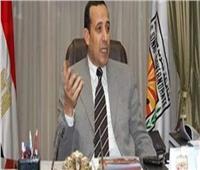 محافظ شمال سيناء يقرر السماح بصيد السمان والشرشير الصيفي