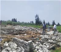 «الزراعة»: الإزالة الفورية للتعديات على الأراضي في 3 محافظات