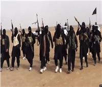 """مقتل عشرة عناصر من """"داعش"""" واعتقال ستة آخرين في محافظتي ديالى والأنبار"""