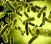باحثون يتوصلون إلى آلية جديدة لنزع سلاح البكتيريا الخطرة