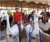 «العيد فرحة».. أطفال الوادي الجديد يحتفلون في حدائق الحيوان