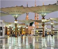 صبح عبد الفتاح: 87 فندقًا فى المدينة يستقبلون 26 ألف حاج سياحي