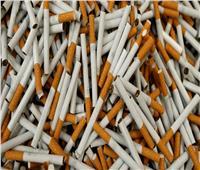 رفع أسعار نوعين من السجائر في مصر.. تعرف عليهما