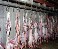 ضبط ومصادرة 1782 كيلو من اللحوم خلال عيد الأضحى