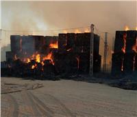 الوادي الجديد: حصر الخسائر المادية جراء حريق شرق العوينات