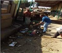 رئيس وحدة محلية بالغربية يرفع القمامة بـ«الكوريك»