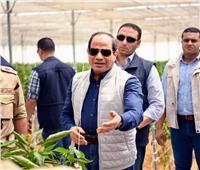 ننشر فيديو لتفاصيل افتتاح السيسي لمشروعات الصوب الزراعية
