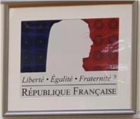 «تي آي چيه» البريطانيةتكشف فضيحةتمويل «الإخوان» لنشر التطرف بين مسلمي فرنسا