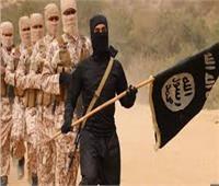 """الرئيس الأفغاني يتعهد بالقضاء على الملاذات الآمنة لتنظيم """"داعش"""""""