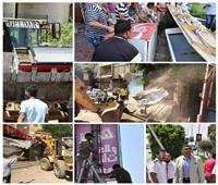 فيديو| استجابة لـ«بوابة أخبار اليوم» حملة مكبرة لإزالة التعديات بالقطامية