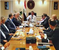 وزير قطاع الأعمال: تطوير «غزل المحلة» وإعادتها للمنافسة في الأسواق العالمية