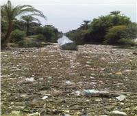 حملات مكبرة لتطهير المجاري المائية بأسيوط