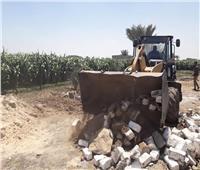 إزالة حالات تعدي على أرض زراعية ورفع إشغالات بأسيوط