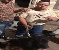 الداخلية توضح حقيقة فيديو التعدي على شاب معاق ذهنيا بـ«كلب»