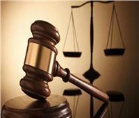 المحكمة التأديبية: مجازاة رئيس مدينة الإسماعيليةو3 مسئولين آخرين