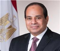 السيسي يشهد أداء حلف اليمين لرئيس «قضايا الدولة»