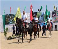انطلاق مهرجان الخيول العربية في الشرقية.. 26 سبتمبر القادم