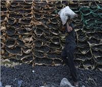مد فترة توفيق الأوضاع البيئية لأصحاب مكامير الفحم