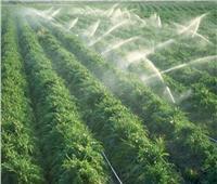 «الري»: توزيع المياه على مستوى المحافظات جيد