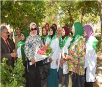 نجاح شباب «صنايعية مصر» في استنباط 5 آلاف شتلة مانجو