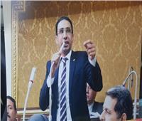 برلماني: مشاركة السيسي بقمة السبع يؤكد على قوة الاقتصاد المصري