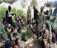 هجوم لـ «بوكو حرام» استهدف قرية في النيجر يوقع 12 قتيلا
