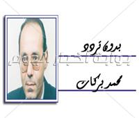 محمد بركات يكتب: مصر.. والسبع الكبار
