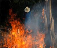 مدن برازيلية تطلب دعم الجيش.. آلاف الجنود يستعدون لمواجهة تهديد خطير